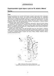 KOS, P.: Experimentální výpal vápna v peci ze 16. století u Mokré, s. 9.