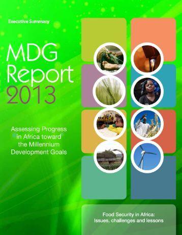 Africa MDG report 2013 summary_EN