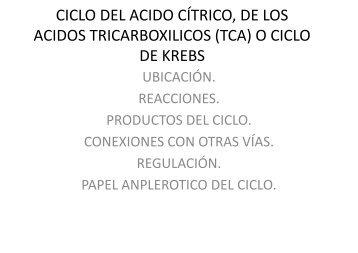 23. ciclo de krebs, del acido citrico o de los acidos tricarboxilicos