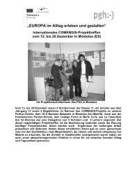 Vollständiger Bericht (pdf) - Paracelsus-Gymnasium-Hohenheim