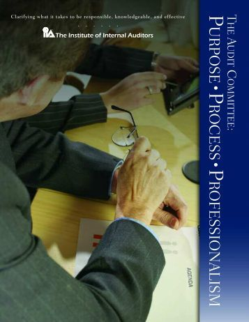 The Audit Committee: Purpose, Process, Professionalism
