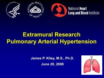 Extramural Research Pulmonary Arterial Hypertension - PHA Online ...