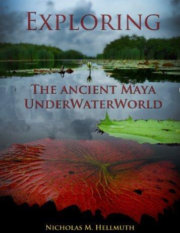 Waterlily Guatemala Mayan ethnobotany - Maya Archaeology