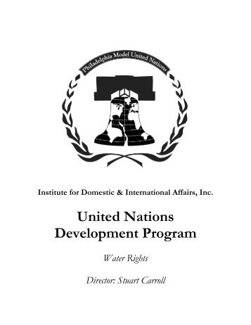 United Nations Development Program - IDIA