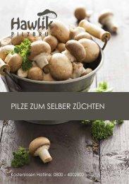 Pilze zum selber Züchten