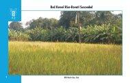 Red Kernel Rice-Revati Succeeded