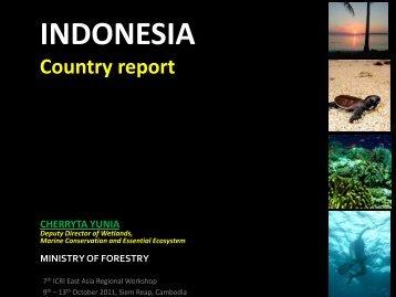 icri presentation - East Asia Regional Activities
