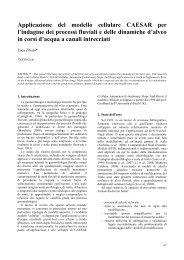 Applicazione del modello cellulare CAESAR per l'indagine dei ...