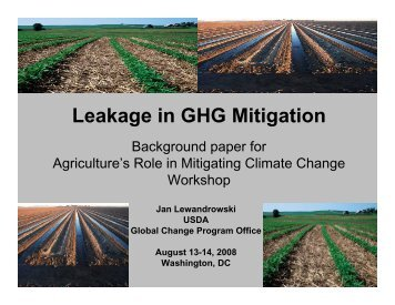 Leakage in GHG Mitigation Policy