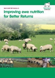 brp-manual-12-Improving-ewe-nutrition-for-better-returns-281114