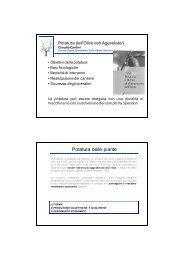 Concetti generali della potatura - Archivio Rete Poli