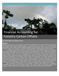 Financial Accounting for Forestry Carbon Offsets - Ecosystem ...