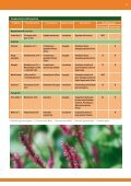 Plant Protection Products - Clamer Informa - Page 2