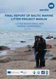 final-report