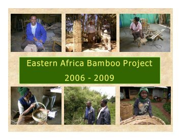 1. Eastern Africa Bamboo Project Overview