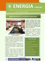 Energia Hírlevél 2010 - november - enerea