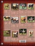 Lauing Mill Iron L Ranch Moreau River Quarter Horses - Page 2