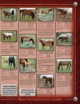 Lauing Mill Iron L Ranch Moreau River Quarter Horses - Page 5