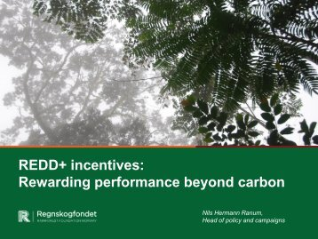 Paying for More than Carbon, a Proposal to the UNFCCC