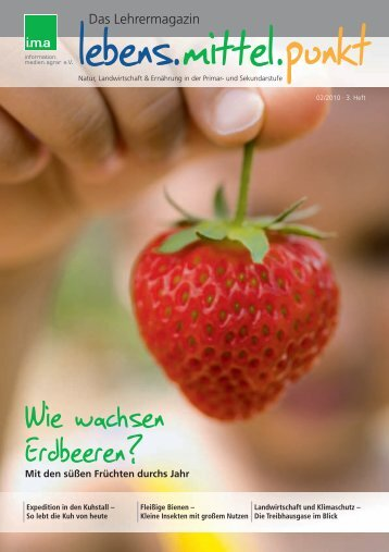 Wie wachsen Erdbeeren? - information.medien.agrar eV