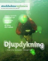 Stockholmsregionen 2-2013 - SLL Tillväxt, miljö och ...