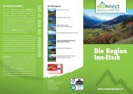 Die Region Inn-Etsch - Alpine Space Programme