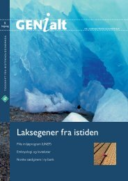 Last ned GENialt 4/2004 (pdf). - Bioteknologinemnda