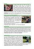 Ausschreibung für Kindertagesstätten - Gartenfreunde Bremen - Page 3