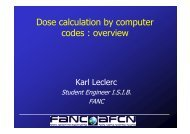 Dose calculation by computer codes : overview