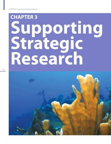 Chapter 3: Supporting Strategic Research - NOAA Coral Reef ...