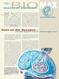 Date an der Synapse – Forscher spüren unseren ... - Scinexx