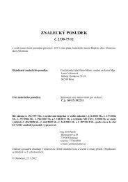ZNALECKÝ POSUDEK - OKdrazby.cz