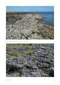 Karst Eestis - Geoloogia Instituut - Page 7