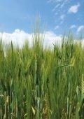 Rapport, 84 bladzijden (5,7 MB, 22 mei 2012) - Landbouw en Visserij - Page 6