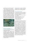 Heissgelagertes Einscheiben-Sicherheitsglas (ESG) - Flachglas ... - Seite 2