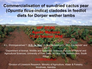 Commercialisation of sun-dried cactus pear (Opuntia ficus-indica ...