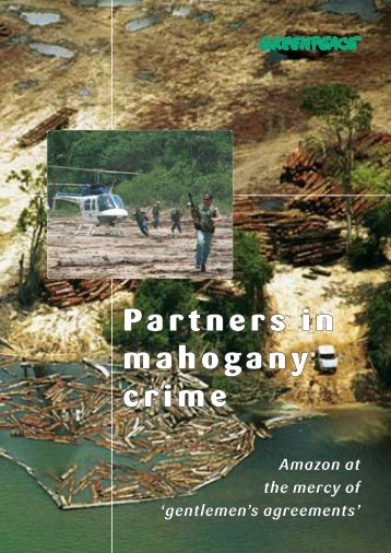 Partners in mahogany crime - Illegal Logging Portal