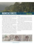 Turning the Page on Rainforest Destruction - Rainforest Action ... - Page 7