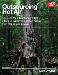 Outsourcing Hot Air The push for sub-national REDD ... - Greenpeace