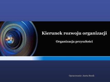 Kierunek rozwoju organizacji. Organizacja przyszłości