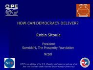 HOW CAN DEMOCRACY DELIVER? - CIPE Development Institute