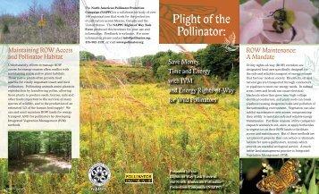 Plight of the Pollinator: