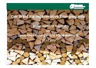 Der Wald als regenerative Energiequelle.pdf - Landesverband ...