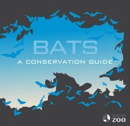 bats-conservationguide