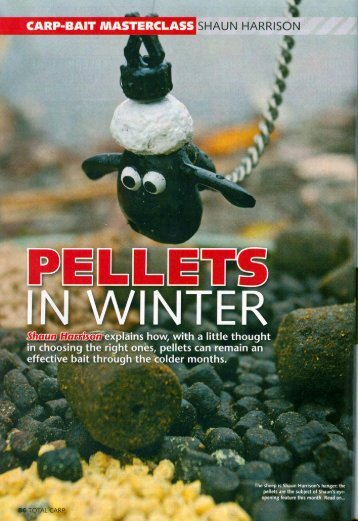 Pellets in winter - Quest Baits