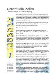 Dendritische Zellen - Dr. Kübler GmbH