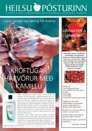 Heilsupóstur (pdf 272kb) - Heilsuhúsið