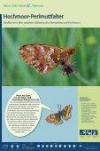 Bekassine - im Biotopverbund - Seite 5
