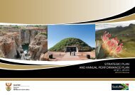 strategic plan and annual performance plan - Department of Tourism