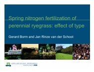 Spring nitrogen fertilization of perennial ryegrass: effect of type